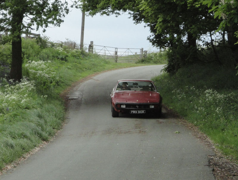 ferrari 365 on road